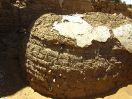 6036 - el-Zayyan fort - Kharga